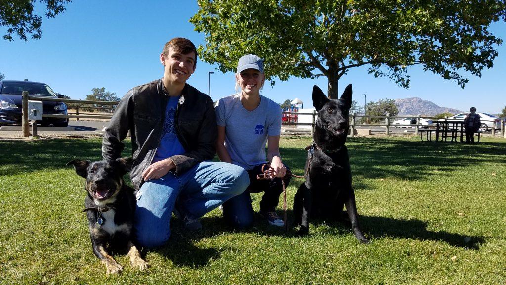 semi-private dog training lessons Prescott K9 Academy